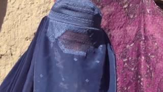 پلوشه: تعویذ نویس تجاوز کننده بر من آزادانه گشت و گذار می کند