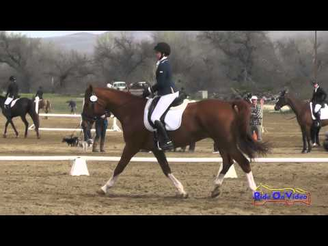 174D Elizabeth Meehan on Hoagy Carmichael JR Novice Dressage Twin Rivers Ranch March 2016
