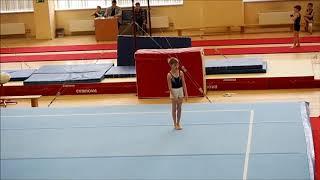 Спортивная гимнастика 2 взрослый разряд Шуравин Евгений