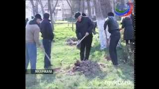 Дагестанские депутаты вышли на субботник