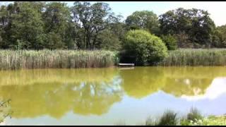 Peaceful Caravan Park in North Yorkshire