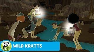 Wild Kratts: Meeting the Human Fish thumbnail