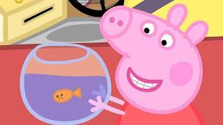 goudje-de-vis-tekenfilm-peppa-pig-nederlands-compilatie-nieuwe
