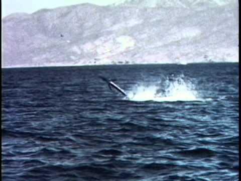 Kid Nichols 1950s Fishing at Las Cruces in Baja del Sur