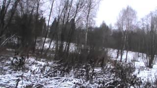Участки по 15 соток деревня Литвинова 60 км от МКАД ИЖС, Газ, Электричество по границе