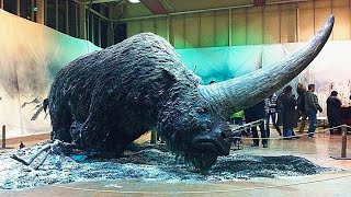 15 Scary Extinct Animals That Actually Existed