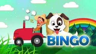 BINGO | Ca Nhạc Thiếu Nhi Vui Nhộn | Học Tiếng Anh Qua Bài Hát