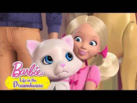 Suche Barbie