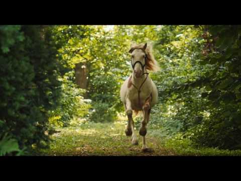 WENDY - DER FILM - HD Teaser-Trailer deutsch | Ab 26.1.2017 im Kino