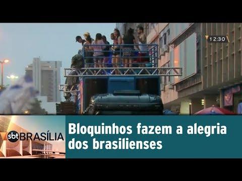 Bloquinhos fazem a alegria dos brasilienses
