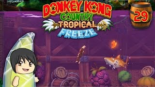 "Donkey Kong Country Tropical Freeze - Part 29: ""Flipping platforms!"""