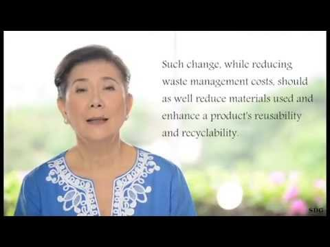Our Road to Zero Waste by Sonia Mendoza, Chairman of Mother Earth Foundation Philippines