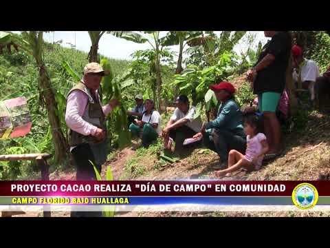 """PROYECTO CACAO REALIZA """"DÍA DE CAMPO"""" EN COMUNIDAD DE CAMPO FLORIDO BAJO HUALLAGA"""