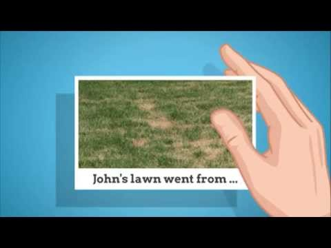 Lawn Care Service Middletown DE 302-562-3651 Lawn Aeration, Green Grass, Fertilizer, Weed Control