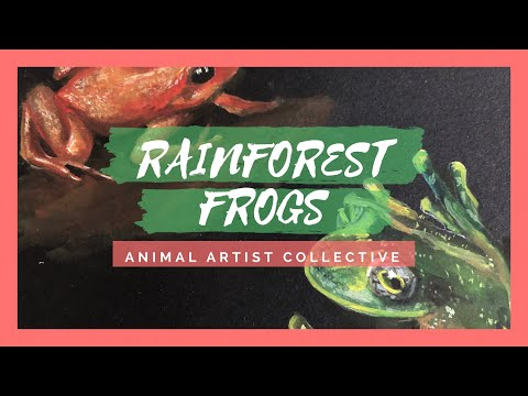 Gouache Endangered Rainforest Frogs | Animal Artist Collective (Unofficial )