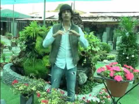 Jesus Pacheco - Qué plantas usar dentro de casa? - America Tv