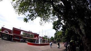 UNIVERSIDAD NACIONAL DE EL SALVADOR.