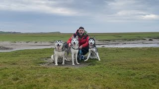 Just 3 Huskies Walking Through The British Countryside! [BEAUTIFUL VIEWS]