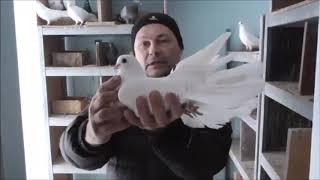 В гостях у Ромы Галавина, г. Донецк.