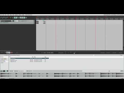 Create a track in Reaper - Music media task | Weber Trumpet