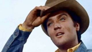 Watch Elvis Presley Snowbird video