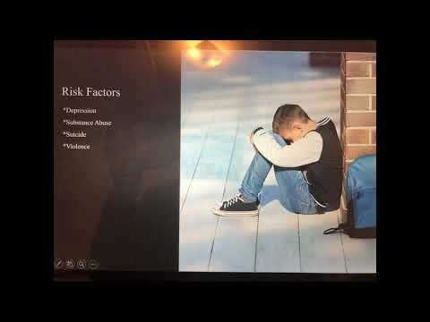 Bullying Risk Factors