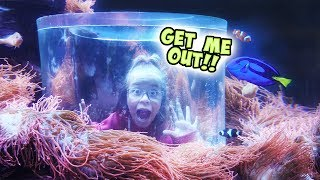WILL AYDAH BE STUCK IN THERE FOREVER?! / SmellyBellyTV
