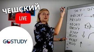 Марафон чешского языка. Живой урок № 10