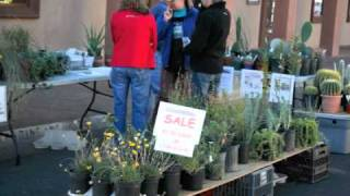 Shopping at Las Cruces-area Farmers Markets