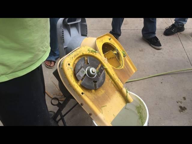Agua Das garden decorticator - raw footage