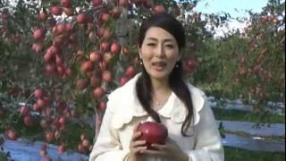 【映像では中国語でのメッセージも】11月7日、台湾や地元メディアの取材...