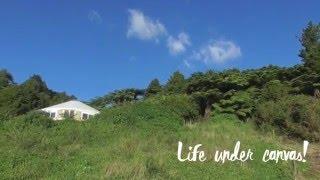 Yurt Living  (a work in progress!)