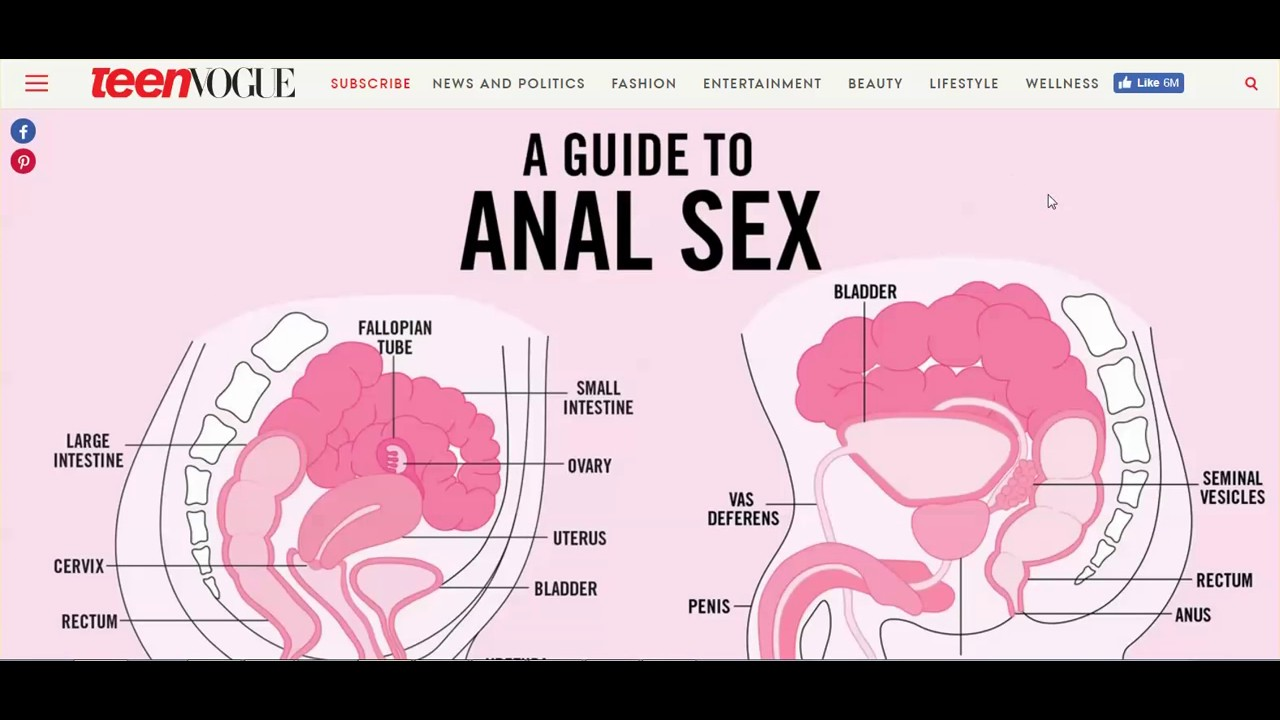 anal-sex-illustration-sex-tinker