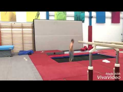 Free running and gymnasts 2017