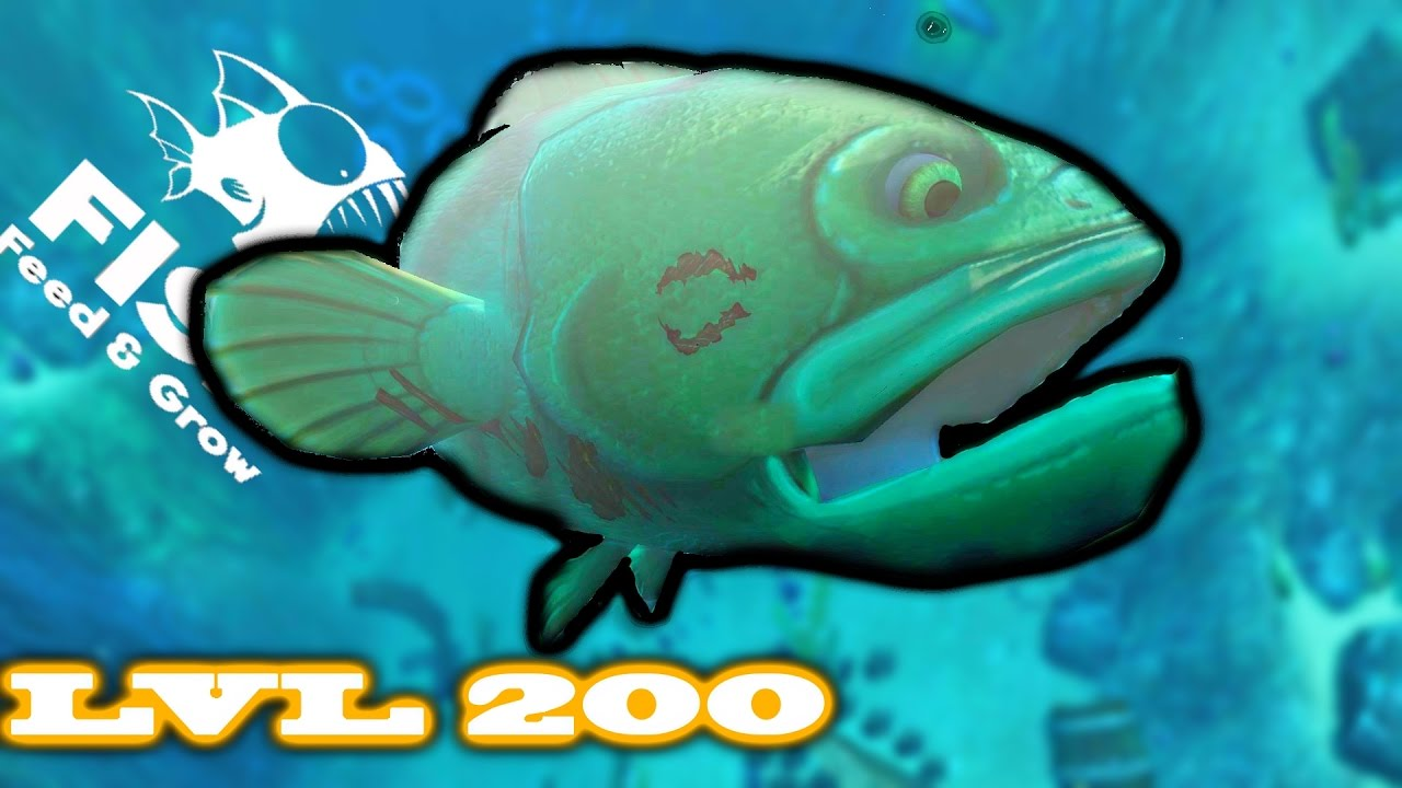 Feed and grow fish new giant level 200 goliath fish too for Fed and grow fish