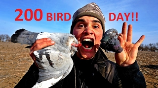 Epic Pigeon Hunting! Funnest Hunt of my Life FT. Andrew Flair