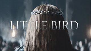 (GoT) Sansa Stark || Little Bird