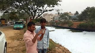 Polluted Belandur lake