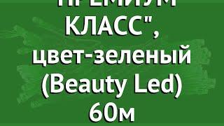 КЛИП ЛАЙТ- СВЕТОДИНАМИКА ПРЕМИУМ КЛАСС, цвет-зеленый (Beauty Led) 60м обзор CLK-EST600-10-1G