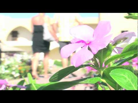 'Extra Fine Quality' - spiritual music video - Christopher Langley Johnston