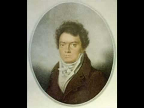 Beethoven - Piano Sonata No. 14 - Moonlight 1st Movement