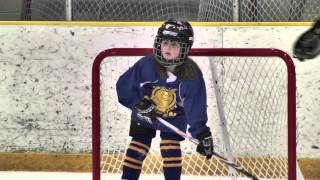 Growing Youth Hockey in Greater Lansing