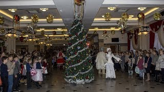 Губернаторская новогодняя елка