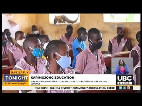 FOOD INADEQUACY IN SCHOOLS AFFECTING UPE ENROLLMENT