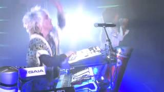 access【Live】Wild Butterfly