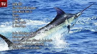 Kılıç Balığının Öyküsü Şiir Halim Şefik Güzelson