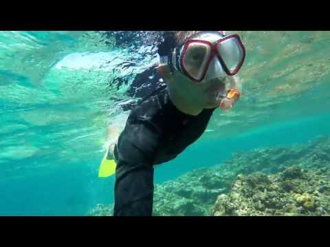 Explore Bali Strait : Pulau menjangan & Pulau Tabuhan