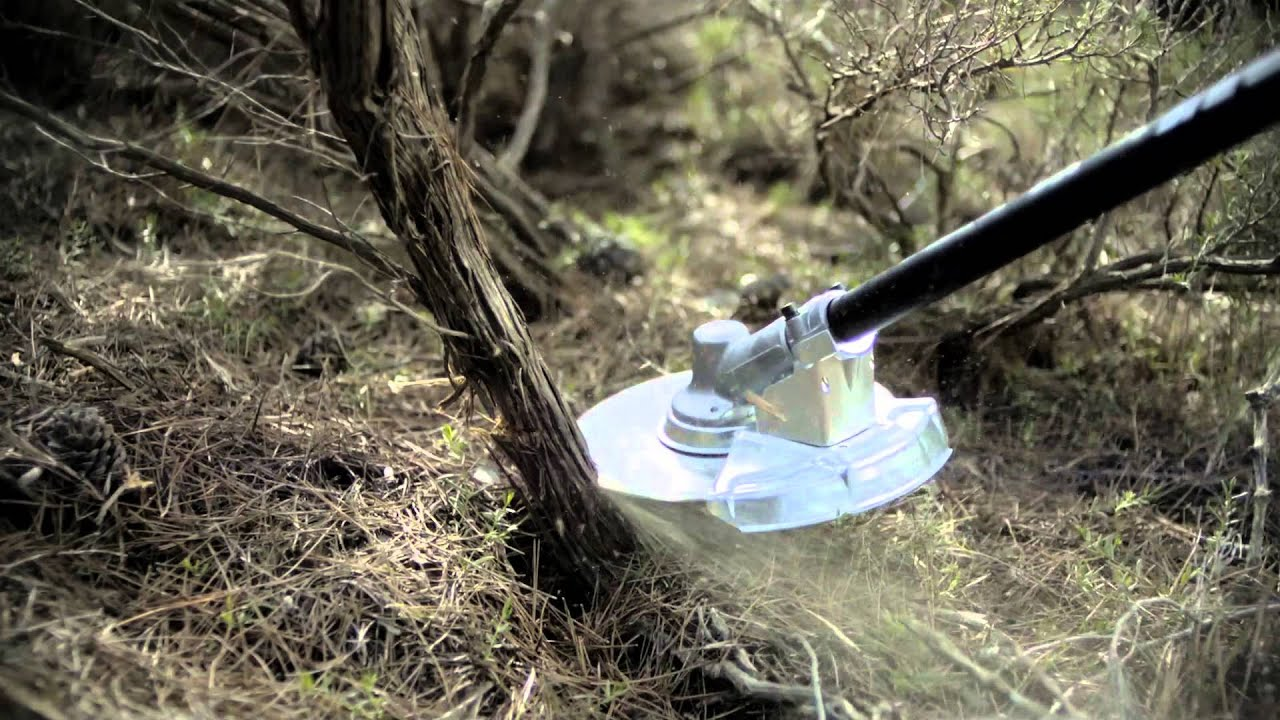 Best Brush Cutter for Small Trees