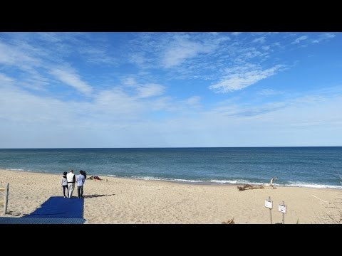 Why We Love Coast Guard Beach