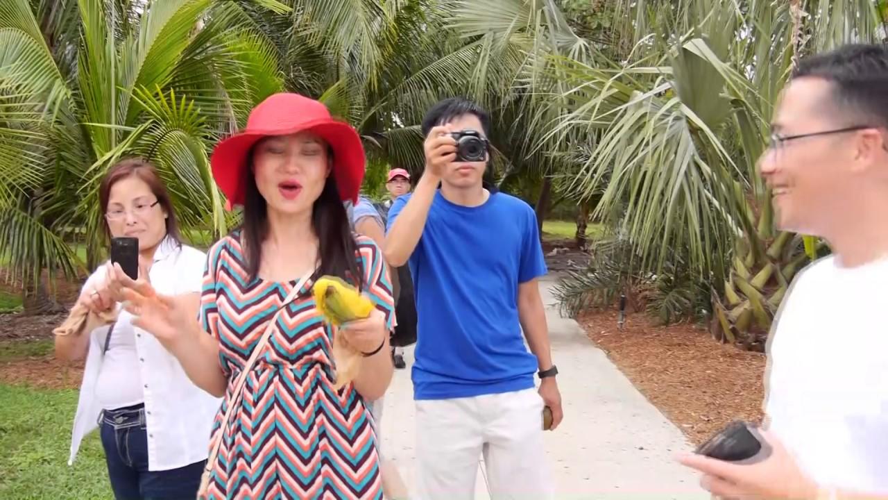 Family Tour Tropical Fruits Farm in Florida
